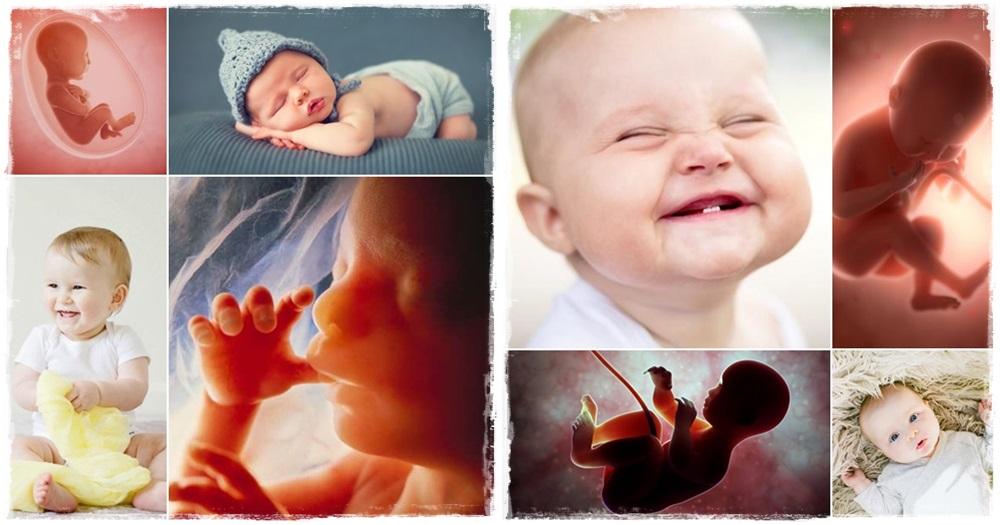 Bibliai kislexikon az abortuszról