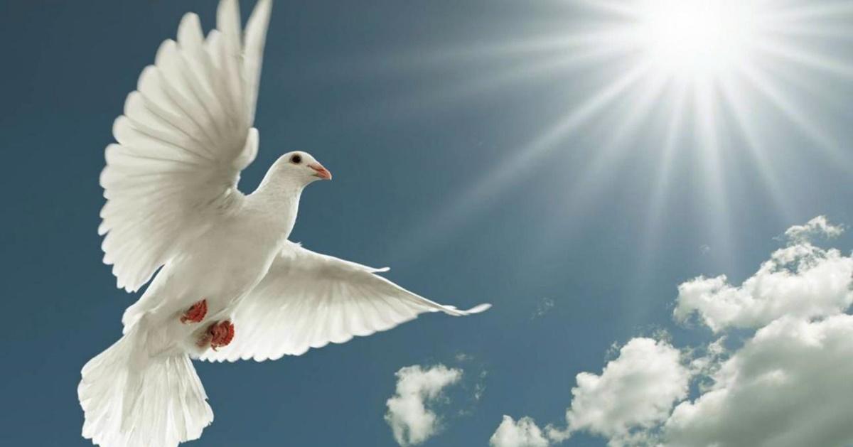 Engedjük magunkat Isten Szelleme által vezetni
