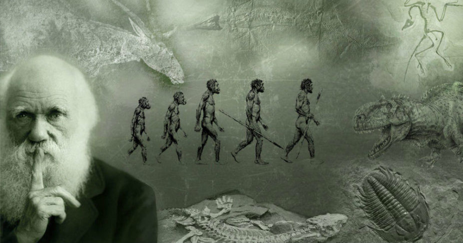 Mivel mond ellent a tudomány az evolúció elméletének?